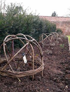 Merveilleux Willow Support Vegetables Garden, Vegetable Gardening, Walled Garden, Plant  Supports, Sweet Peas