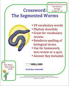 Phylum Annelida Segmented Worms Crossword Puzzle (Earthworm) ($)