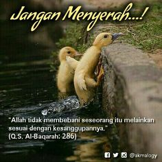 """Anda Pasti Sanggup """"Allah tidak membebani seseorang itu melainkan sesuai dengan kesanggupannya."""" (Q.S. Al-Baqarah: 286)"""