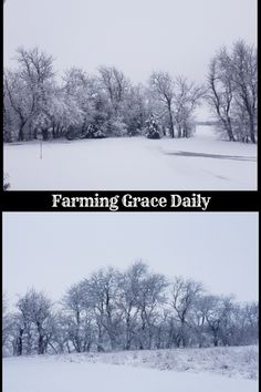 January 2019 – Winter Once Again Twin Brothers, Farm Life, Farming, Winter, Outdoor, Winter Time, Outdoors, Outdoor Games, Outdoor Living