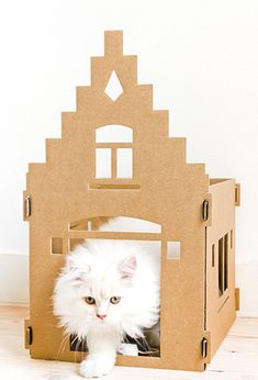 How cool is that: an Amsterdam Canal House for King/Queen Cat (source: Marie-Anne: kattenpandjes Kek Amsterdam)