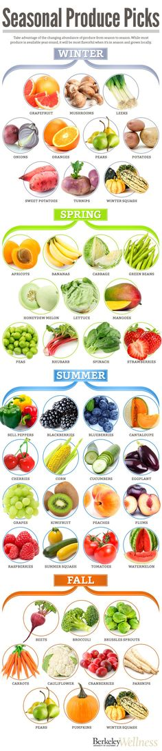 Seasonal pick! Which fruits and veggies are in season during winter, spring, summer and fall. #health #diet #healthyeating #healthydiet #fitness Vegan Nutrition, Nutrition Chart, Nutrition Guide, Bar, Food, Eten, Hoods, Meals