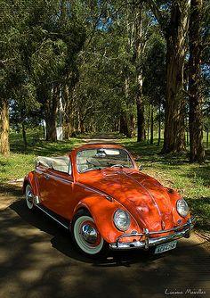 Sessão Fusca Conversível | Volkswagen Fusca 1962, totalmente… | Flickr