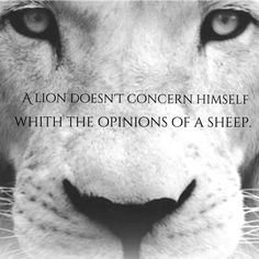 A lion doesn't concern himself with the opinions of a sheep...! on We Heart It