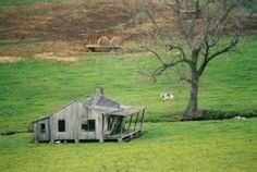 Old Homestead Cabin ~ Alaska | Alaska ~The Last Frontier ...