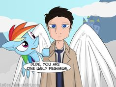 HE'S NOT A PEGASUS RAINBOW DASH! HE'S AN ANGEL OF THE LORD!