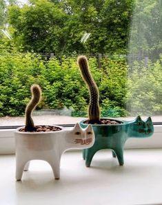 to make a succulent terrarium house plants Best Faux Succulents 2020 // Archareer Garden Types, Diy Garden, Garden Art, Garden Landscaping, Balcony Garden, Shade Garden, Garden Beds, Artificial Succulents, Faux Succulents
