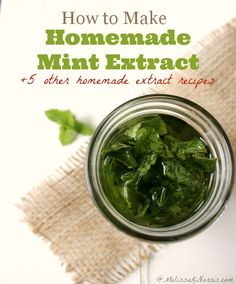 Tired of paying high grocery store prices? Here's How to make homemade mint extract with 5 other extract recipes. Perfect for the holiday baking season and as a way to preserve your fresh herbs. Read this now to get started making your own extract.
