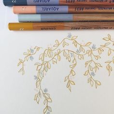 hand drawn vines // watercolor pencils     via @louandletter
