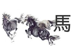 caballo agresivo - Buscar con Google