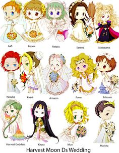 Different Marriage possibilities from various Harvest Moon games.