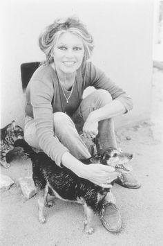Brigitte Bardot | Брижит Бардо's photos – 39,590 photos | VK