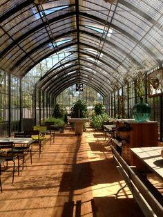 Winter Greenhouse, Backyard Greenhouse, Greenhouse Gardening, Big Garden, Garden Trees, Indoor Garden, Future House, My House, Marquise