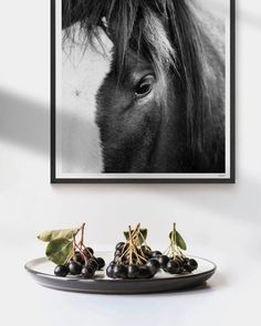 We take you through the ins and outs of framing wall art, and how to find your aesthetic and get your prints on the wall! Framed Wall Art, Wall Art Prints, Framed Prints, Modern Prints, Modern Wall Art, Highland Cow Art, Scandinavian Art, Horse Print, Equine Photography