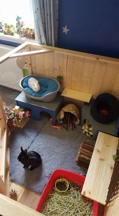 A great idea for your bunny's house: there's enough space, there are enough toys, there's a litter box, there're multiple hide houses, and there is also a confortable bed!
