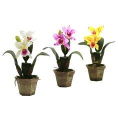 Cattelya Orchid w-Vase (Set of 3)