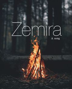 Zemira, baby girl names, biblical girl names, female, strong, unique, first, middle, names. Names that start with a Z .