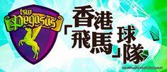 . 2010 - 2012 恩膏引擎全力開動!!: 香港「飛馬」球隊
