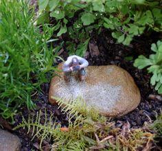 Small World Terrarium 'Eye Spy'  Handmade by The Small Garden