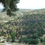 @LifeInfonatur 15 h #Paisajes de la #RedNatura2000. Vista desde #Pedraza (#Segovia) Sitio de la Directiva de Aves Vía @Arturo Larena pic.twit...