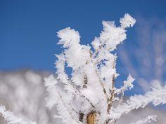VALAVIER Aktivresort - Angebote Clouds, Winter, Outdoor, Winter Time, Outdoors, The Great Outdoors, Winter Fashion, Cloud