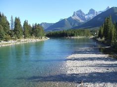 The Bow in Canmore, Alberta - a very special place. I caught a whitefish here once (catch & release).  Thanks for the re-post, Penny.