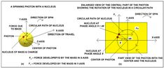 Shows a spinning photon as a yellow sphere with a small nucleus of mass... | Download Scientific Diagram Theoretical Physics, Spinning, Diagram, Yellow, Hand Spinning, Indoor Cycling