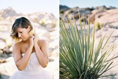 Alexandra-Elise-Photography-Ali-Reed-Joshua-Tree-California-Wedding-Film-Photographer-002