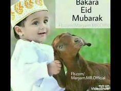 Eid Adha Mubarak, Eid Mubarak Status, Eid Mubarak Quotes, Eid Quotes, Eid Mubarak Images, Eid Mubarak Wishes, Happy Eid Mubarak, Allah Quotes, Quotes Images