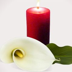Fie ca de Sfintele Sarbatori de Pasti sa ne deschidem inimile si sa lasam lumina Sfintei Invieri sa ne patrunda in case. Paste Fericit! http://ofelicitare.ro/felicitari-de-paste/sfintele-sarbatori-de-pasti-789.html