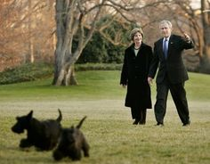 The Bushes - Scottish Terriers Barney and Miss Beazley Weazley