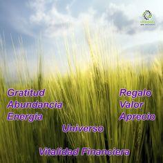 ¿Sabías que el ser agradecido incrementa tu vitalidad financiera? Genera abundancia pues el universo te regala valor por el aprecio que muestras al agradecer lo poco o mucho que tengas el día de hoy. #VitalidadFinanciera