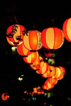 Japanese Orange Party Lanterns