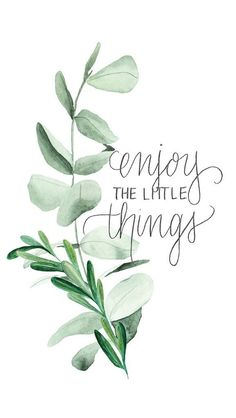 'Enjoy the little things' plant phone background/wallpaper. Handy Wallpaper, Mobile Wallpaper, Wallpaper Free Download, Wallpaper Downloads, Phone Backgrounds, Wallpaper Backgrounds, Iphone Wallpapers, L Eucalyptus, Enjoy The Little Things