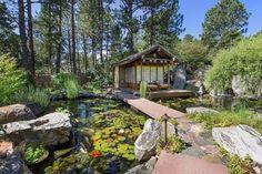 water garden --Fence in backgrouns