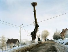Mark Power, Krzyzowka, 12.2004 The Sound of Two Songs by Mark Power, a Magnum photographer from the UK, is a culmination of his five year project set in contemporary Poland following country's...