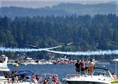 73 Best Seafair log boom images in 2019 | Airplane view