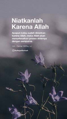 Hadith Quotes, Qoutes, Some Words, Islamic Quotes, Allah, Dan, Coffee, Random, World