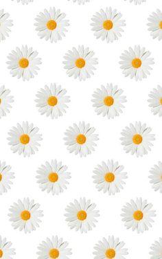 Daisy me rollin,dey hatin'! Daisy Wallpaper, Vintage Flowers Wallpaper, Lit Wallpaper, Phone Screen Wallpaper, Sunflower Wallpaper, Wallpaper Iphone Disney, Kawaii Wallpaper, Cellphone Wallpaper, Galaxy Wallpaper