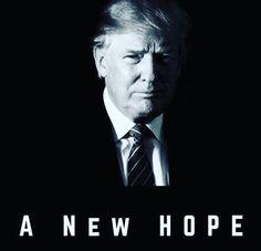 VOTE TRUMP!!!