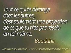 Tout ce qui te dérange chez les autres, c'est seulement une projection de ce que tu n'as pas résolu en toi-mêmes. Buddha