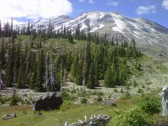 Mt.St. Helens National Forest in Washington state.