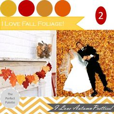 The Perfect Palette: {Fall Favorites}: These are a Few of My Favorite Fall Things! Part 2