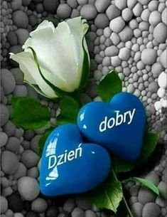 Dla każdego: DZIEŃ DOBRY Good Morning Messages, Ha Ha, Beautiful Things, Letters, Facebook, Good Morning Wishes, Funny Stuff, Wtf Funny, Letter