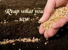 In all that you do! It's in God's word! Believe it! What are you planting?????