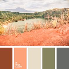 a succulent-inspired color palette // From the minty green and icy blue hues to the yellows, peaches, and pinks, this robust little plant makes for a perfect palette of soft summer colors. Summer Color Palettes, Orange Color Palettes, Green Colour Palette, Summer Colors, Peach Color Schemes, Beige Color, Coral Color, Orange Pastel, Desert Colors