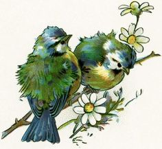 Old Design Shop ~ free digital vintage image: cute pair of birds perched on a branch, Vintage Printable