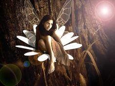 Google Image Result for http://urbantitan.com/wp-content/uploads/2010/11/Fairy.jpg