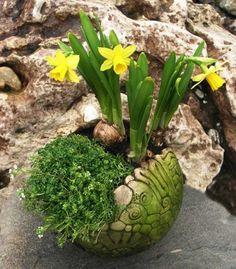 Modern und fröhlich gestaltete Dekors aus Keramik für den Garten. Frostfest gebrannt und liebevoll glasiert, zieren sie Ihr gestaltetes Zuhause.