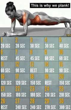 30 Day Plank Challenge - Benefits of Plank Exercise: *It strengthens your lower back. *It develops your core muscles – which include the abs, back, hips and the butt. *Helps you to avoid injuries and encourage good posture. Fitness Workouts, Fitness Herausforderungen, Fitness Motivation, Sport Fitness, At Home Workouts, Health Fitness, Fitness Plan, 30 Day Plank Challenge, Workout Challenge